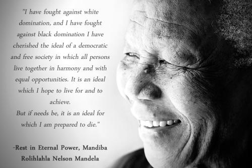 Nelson Mandela Quote 2013